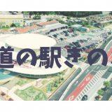 【沖縄・道の駅】リニューアルした道の駅ぎのざで大人から子供まで楽しめる