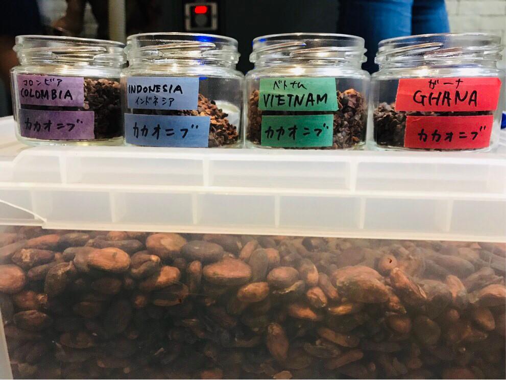 タイムレスチョコレート カカオ豆